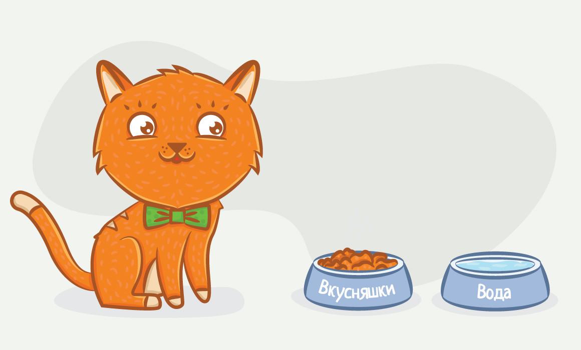 сколько раз нужно кормить котенка