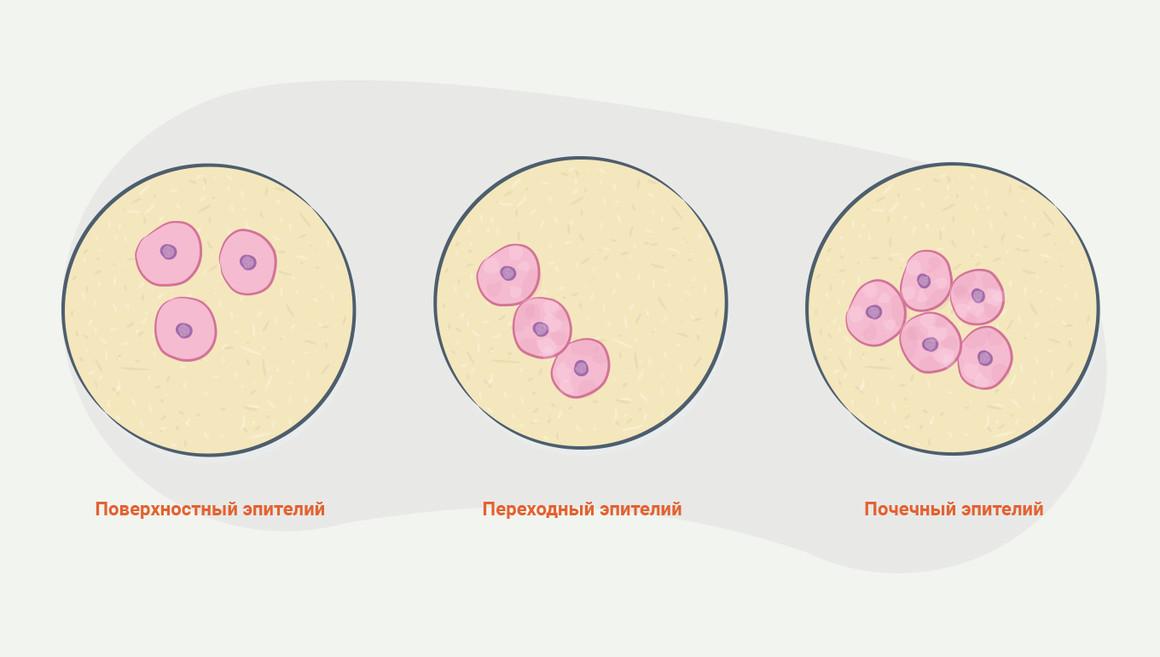 Справка ПНД для госслужбы Сухаревская
